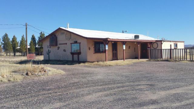 6907 N Double Adobe Road, Mcneal, AZ 85617 (#164913) :: Long Realty Company