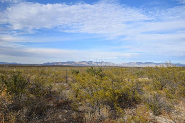 Xxxx Rustlers Ridge, Tombstone, AZ 85638 (MLS #165256) :: Service First Realty