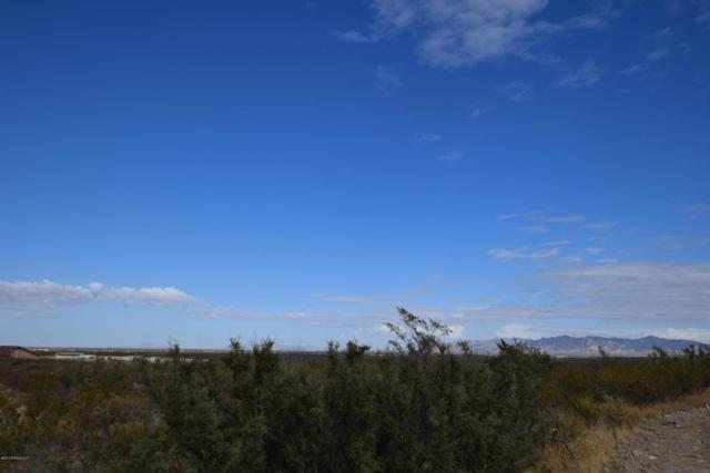 Xx Rustlers Ridge, Tombstone, AZ 85638 (MLS #165461) :: Service First Realty