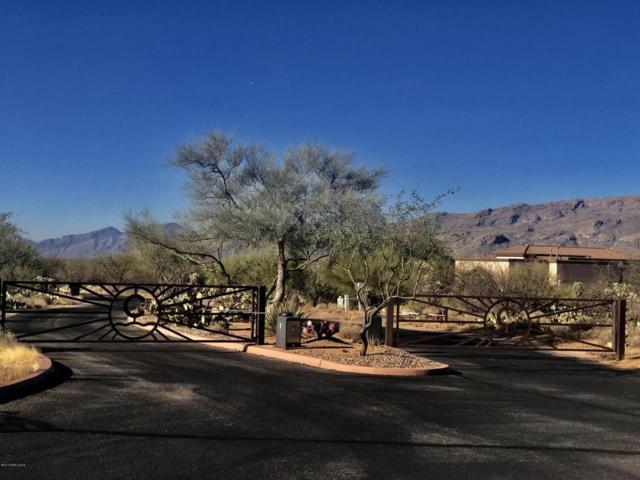 14724 E Diamond B Ranch Place, Vail, AZ 85641 (#165744) :: Long Realty Company