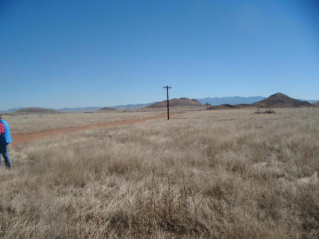 Tbd E Rainbows End Trail, Elfrida, AZ 85610 (MLS #165914) :: Service First Realty