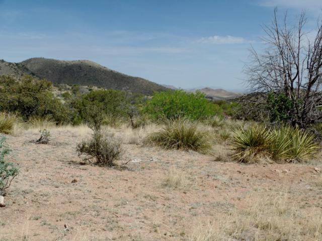 Lot 2 Oakdale Ranches, Elfrida, AZ 85610 (MLS #167024) :: Service First Realty