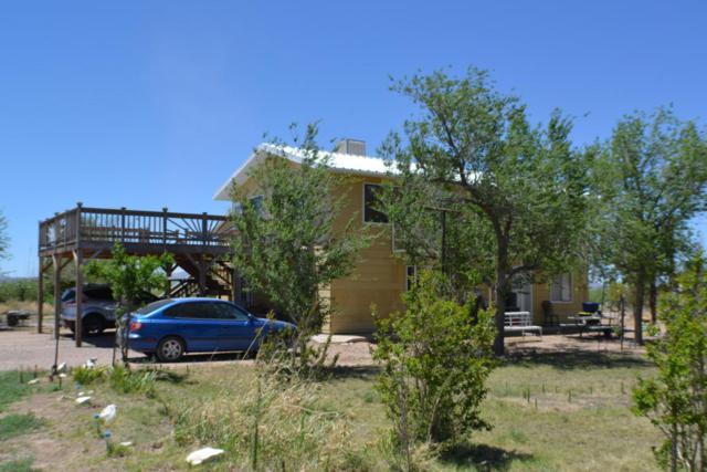 4295 W Jefferson Road, Elfrida, AZ 85610 (MLS #167112) :: Service First Realty