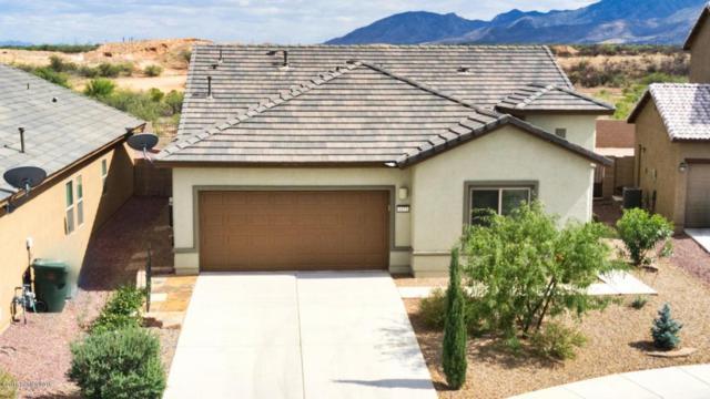 1473 Paso Robles Avenue, Sierra Vista, AZ 85635 (#167646) :: Long Realty Company