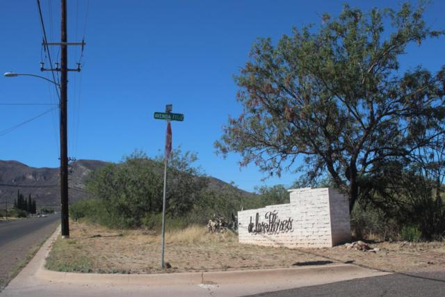 Tbd S Avenida Feliz, Bisbee, AZ 85603 (MLS #167762) :: Service First Realty