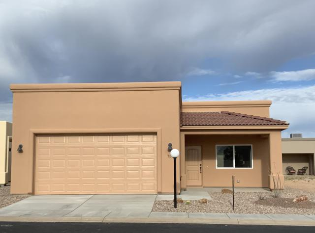 736 S Taylors Trail, Sierra Vista, AZ 85635 (#168144) :: Long Realty Company