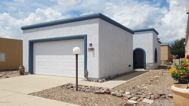 430 S Chase Street, Sierra Vista, AZ 85635 (MLS #168148) :: Service First Realty