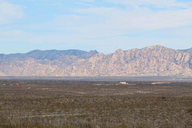 Tbd 1Ac, Tombstone, AZ 85638 (MLS #169455) :: Service First Realty