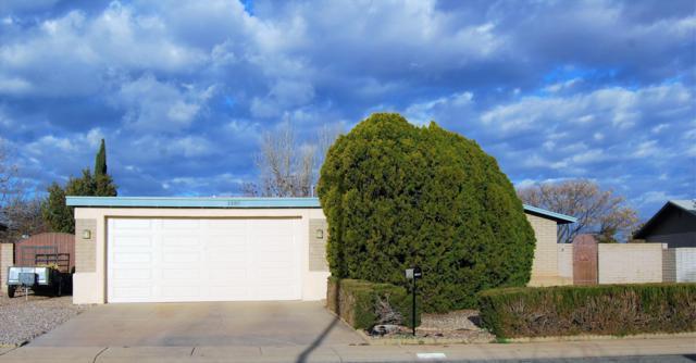 1385 Via Viento, Sierra Vista, AZ 85635 (MLS #169613) :: Service First Realty