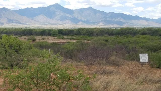 Tbd S Paloma Trail, Hereford, AZ 85615 (MLS #170213) :: Service First Realty