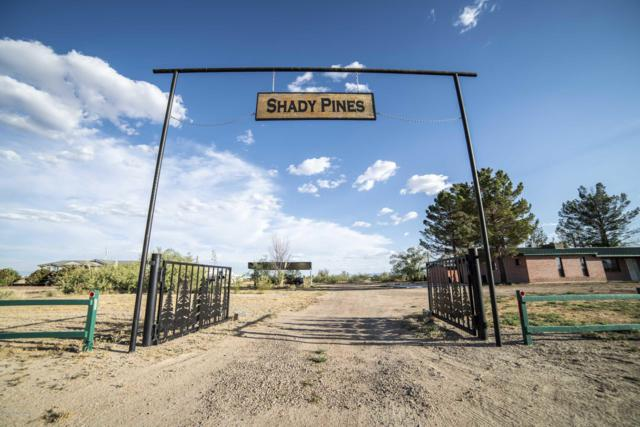 2571 W Airport Road, Willcox, AZ 85643 (MLS #171299) :: Service First Realty