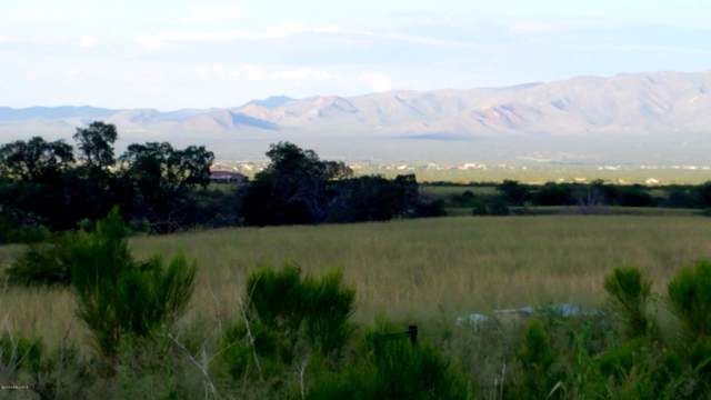 Lot 14 S Bryerly Place, Hereford, AZ 85615 (MLS #171720) :: Service First Realty