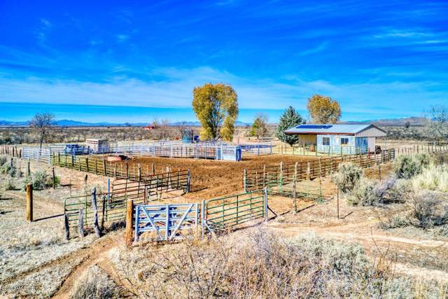 11504 S Duck Tank Road, Pearce, AZ 85625 (MLS #172849) :: Service First Realty
