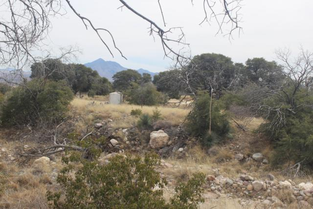 5690 E Mountain View Road, Hereford, AZ 85615 (MLS #160566) :: Service First Realty