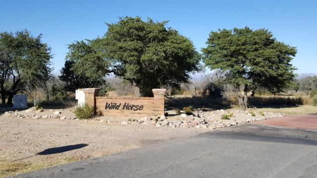 Tbd S Hackney Place, Hereford, AZ 85615 (MLS #161658) :: Service First Realty