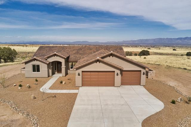 Big Spur Circle, Hereford, AZ 85615 (MLS #167449) :: Service First Realty