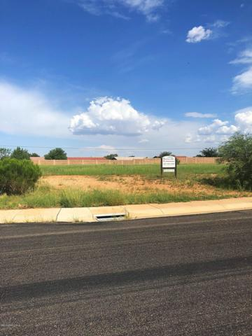Tbd Puerto Place Lot 319, Sierra Vista, AZ 85650 (MLS #167905) :: Service First Realty
