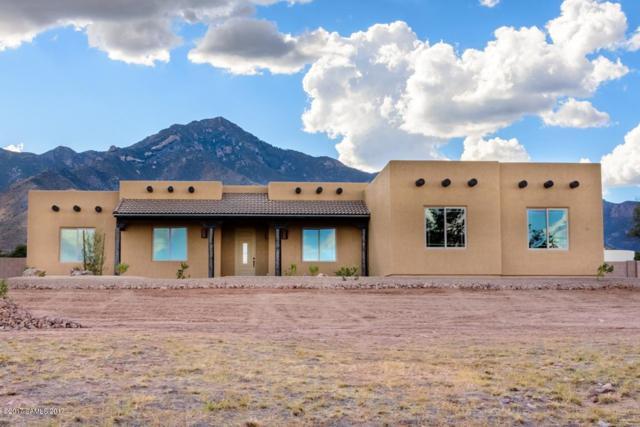 10136 S Wilderness Road Lot 4, Hereford, AZ 85615 (#163086) :: The Josh Berkley Team