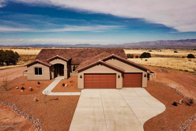 Big Spur Circle, Hereford, AZ 85615 (#165248) :: The Josh Berkley Team