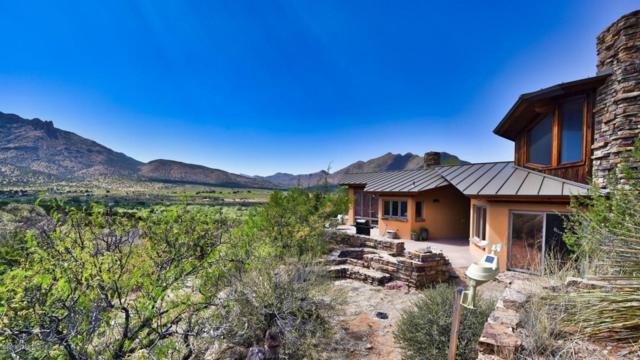 1243 W Creek Road, Portal, AZ 85632 (MLS #166988) :: Service First Realty