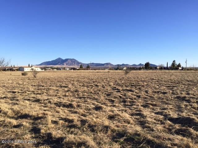 Tbd E Faith Avenue, Hereford, AZ 85615 (MLS #160816) :: Service First Realty