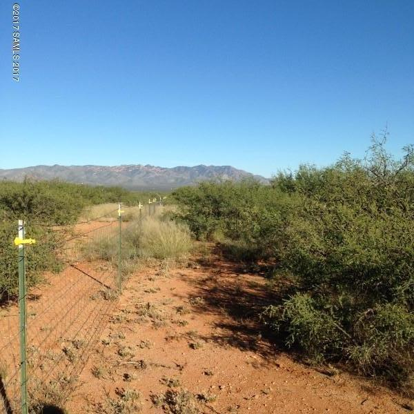 Address Not Published, Hereford, AZ 85615 (MLS #161633) :: Service First Realty