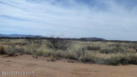 369 Acre High Lonesome Road, Elfrida, AZ 85610 (MLS #161964) :: Service First Realty