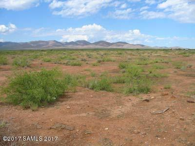72.6 Acres Old Davis, Tombstone, AZ 85638 (MLS #162655) :: Service First Realty