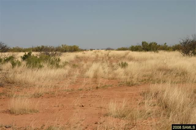 Lot B Three Canyons, Hereford, AZ 85615 (MLS #164496) :: Service First Realty