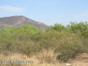 Tbd Carlson Way, Huachuca City, AZ 85616 (#165503) :: Long Realty Company
