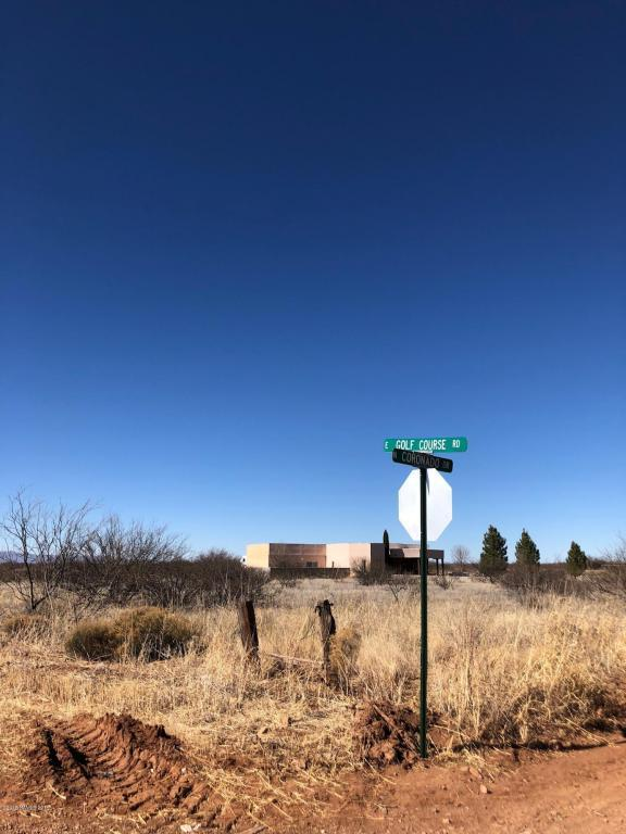 1754 E Golf Course Road, Douglas, AZ 85607 (MLS #165723) :: Service First Realty