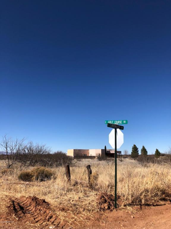 1758 E Golf Course Road, Douglas, AZ 85607 (MLS #165726) :: Service First Realty