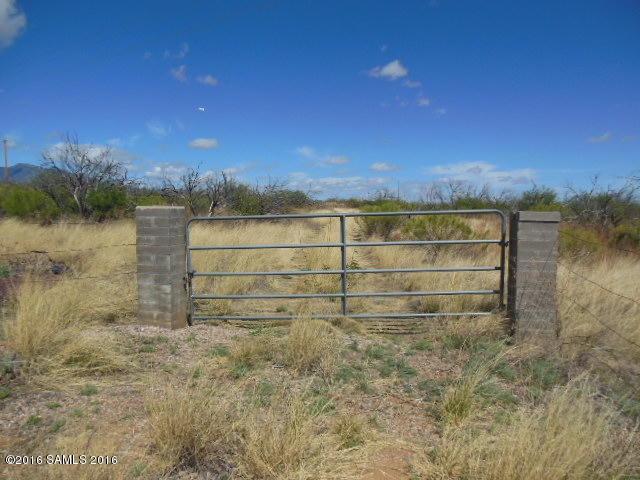 5251 E Calle De La Manzana, Hereford, AZ 85615 (MLS #167797) :: Service First Realty