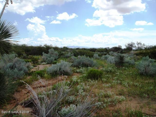 11003 N Legend Trail, Elfrida, AZ 85610 (MLS #168163) :: Service First Realty