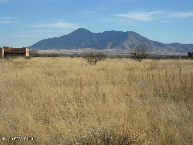 45f E Vista Montanas, Hereford, AZ 85615 (MLS #169380) :: Service First Realty