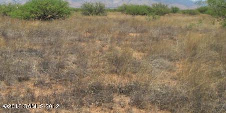 Tbd2 N Rascal Ranch Road, Huachuca City, AZ 85616 (MLS #169498) :: Service First Realty