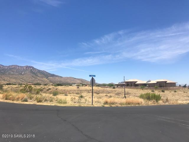 Tbd E Bryerly Drive, Hereford, AZ 85615 (MLS #171154) :: Service First Realty