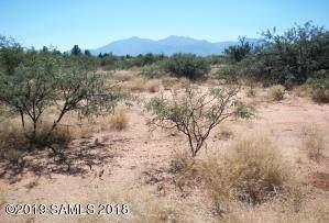 Tbd N Gunsmoke Avenue, Sierra Vista, AZ 85635 (MLS #171820) :: Service First Realty