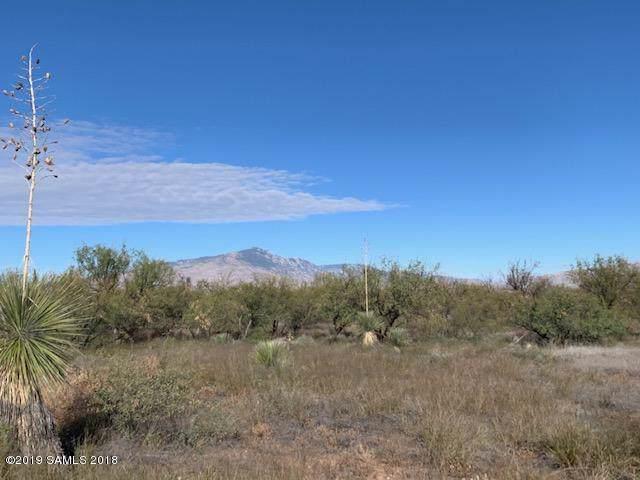 2 Lots On Century Drive #452, Benson, AZ 85602 (#172617) :: The Josh Berkley Team