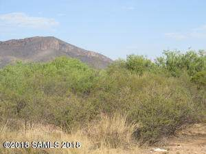 Tbd Carlson Way #2, Huachuca City, AZ 85616 (MLS #173007) :: Service First Realty