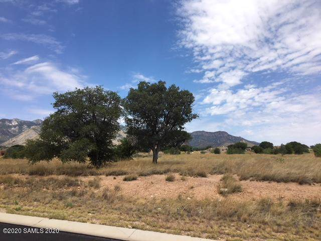 Lot E Saddlehorn Circle Road #66, Hereford, AZ 85615 (MLS #173008) :: Service First Realty