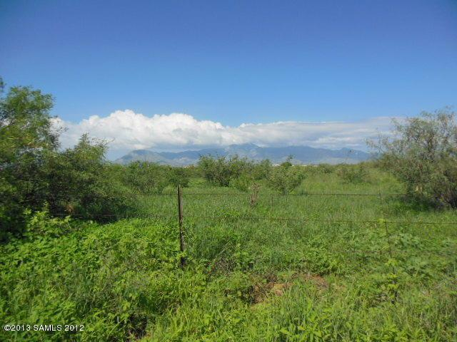 Lot C Palominas Road, Hereford, AZ 85615 (MLS #155150) :: Service First Realty