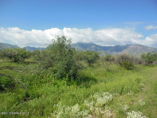 Lot A Sw Corner Of Palominas Herefor, Hereford, AZ 85615 (#155151) :: Long Realty Company