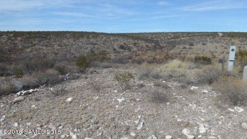 Tbd San Pedro Way, Tombstone, AZ 85638 (MLS #161364) :: Service First Realty