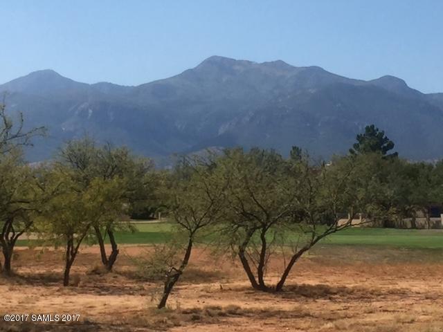 2916 Saint Andrews Drive, Sierra Vista, AZ 85650 (MLS #164907) :: Service First Realty