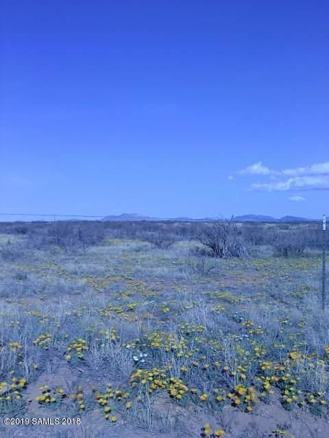 Tbd S Bascom Trail, Willcox, AZ 85643 (MLS #169169) :: Service First Realty