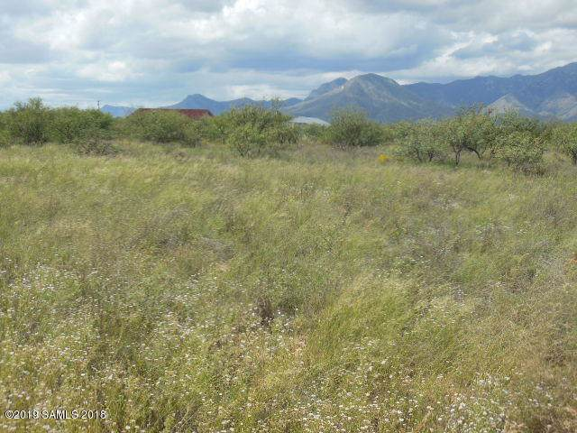 Tbd Palominas & Calle Tejas, Hereford, AZ 85615 (MLS #171091) :: Service First Realty