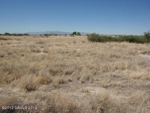 Tbd First & Second Avenue, Willcox, AZ 85643 (MLS #144760) :: Service First Realty