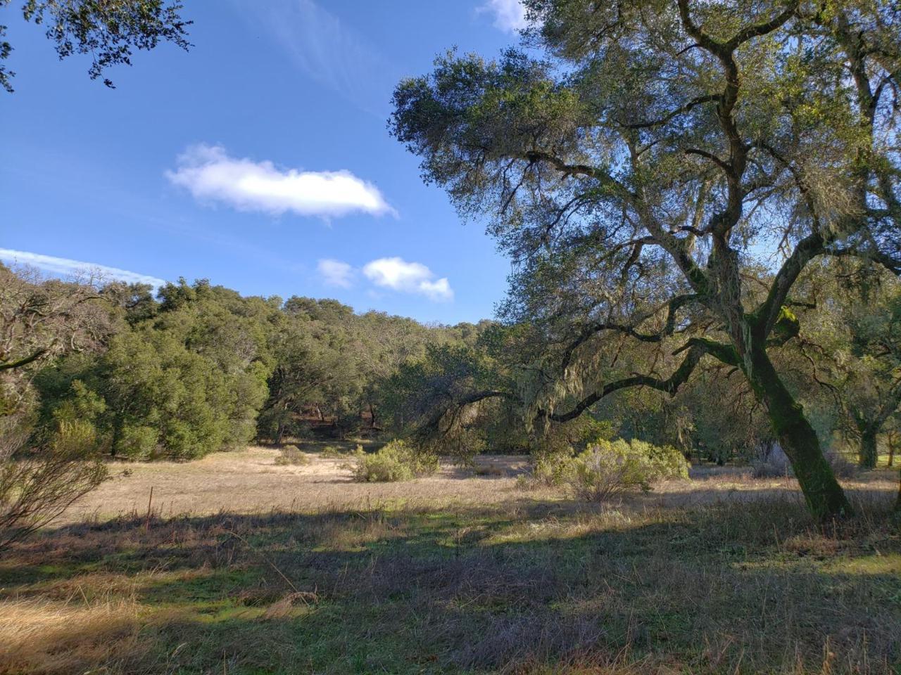 11 Arroyo Sequoia - Photo 1
