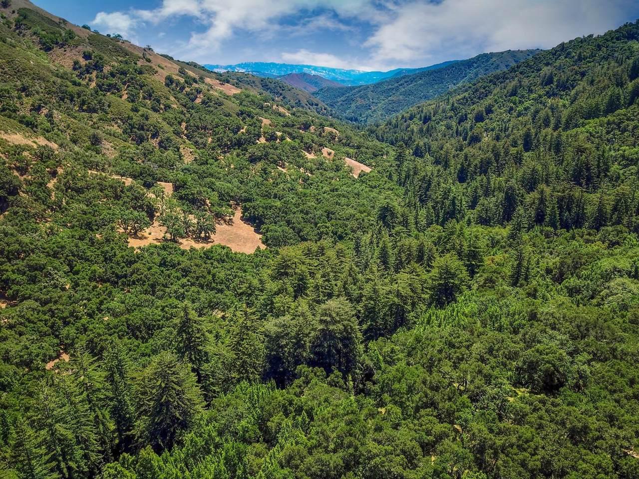 27 San Clemente Trail - Photo 1